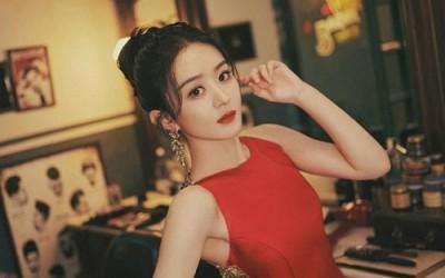 "Wang Yibo Dropped From Zhao Liying's ""Wild Bloom"""